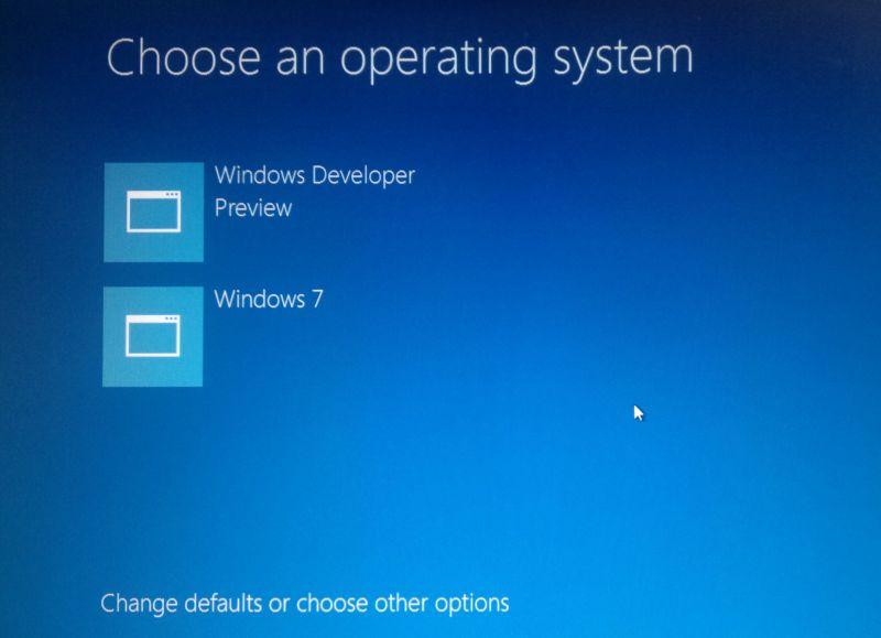 Windows 8 Developer Preview choosing OS