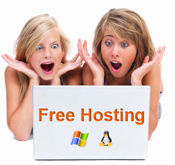 Free web hosting 5 Reasons Why you Should not go for free Hosting Service for your Blog