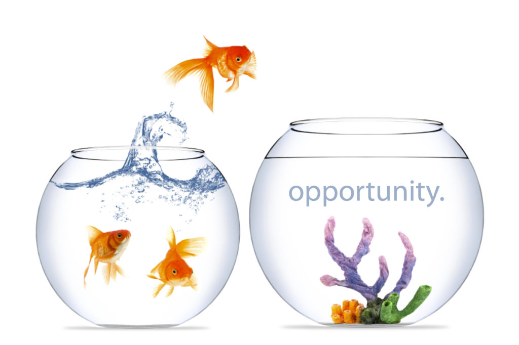 OpportunityEmailMkt