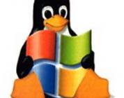 Windows & Linux Install